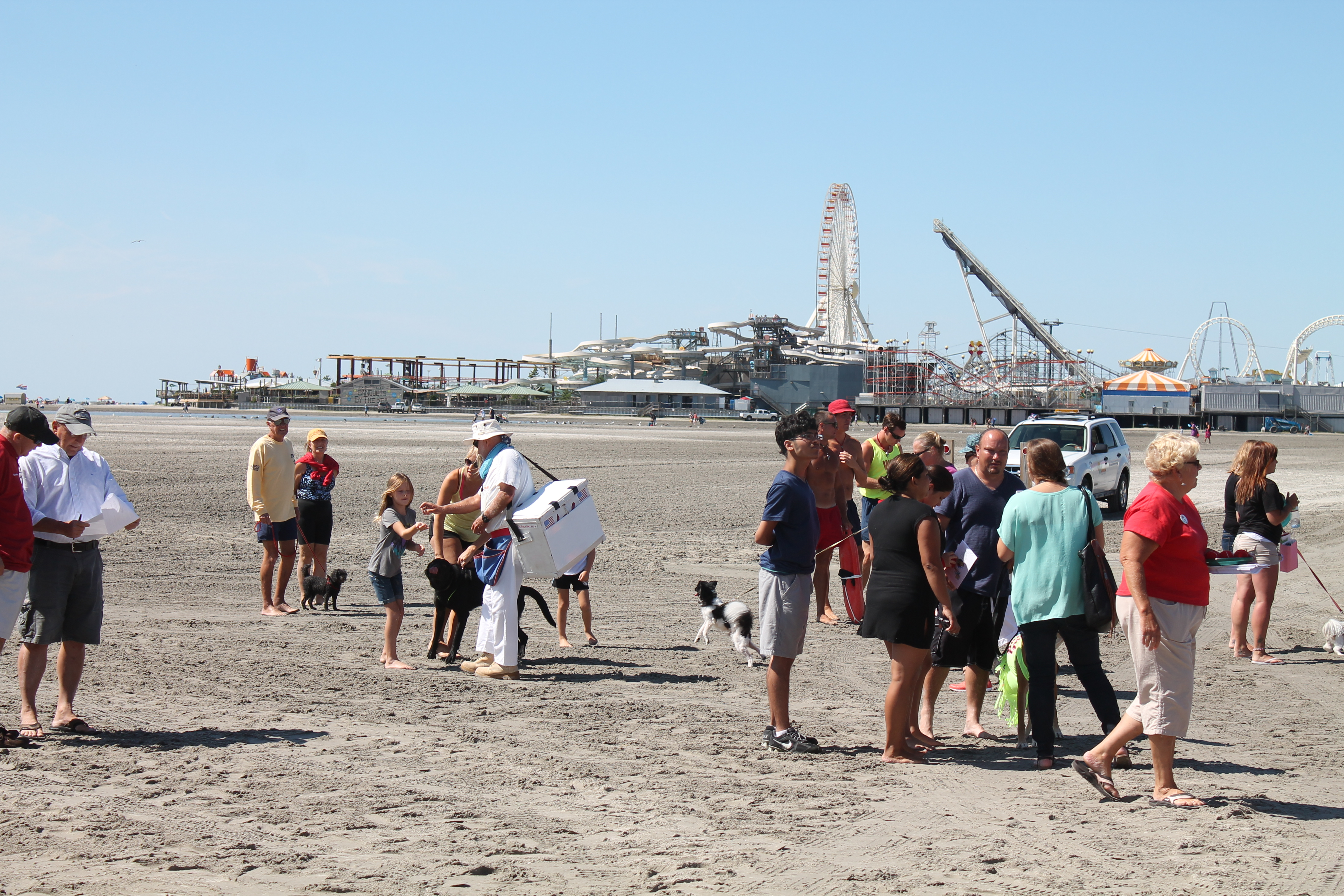 the city of wildwood unveils new dog beach art sculpture at poplar